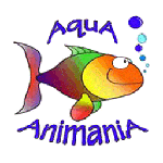 AquA AnimaniA - Pets, Ponds, Fish and Beyond!