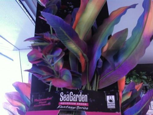 Seagardens Neon Aquarium Plants - 3pack
