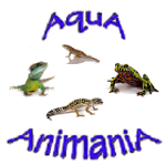 Amphibians, Reptiles - Supplies, Products and Accessories