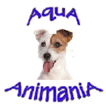Dogs and Puppies - Pets and Supplies