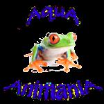 Frogs, Amphibians, Reptiles | AquA AnimaniA