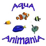 Marine Saltwater Fish - Various Species