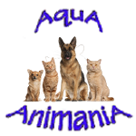 Pets, Supplies, Products and Accessories