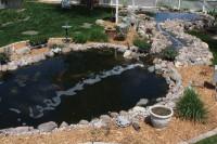 Pond Filtration