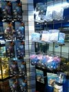 All Aquarium Decor, Ornaments and Plants 30% Off!