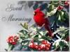 baby_handfed_birds_3