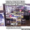 Tetra Aquariums Authorized Blowout! Just Click, Pic 'n Save!