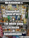 SpongeBob, Dora and The Whole Gang!!! All 20% Off!